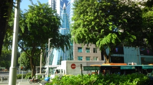 Orchard Road 1