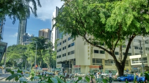 Orchard Road 12