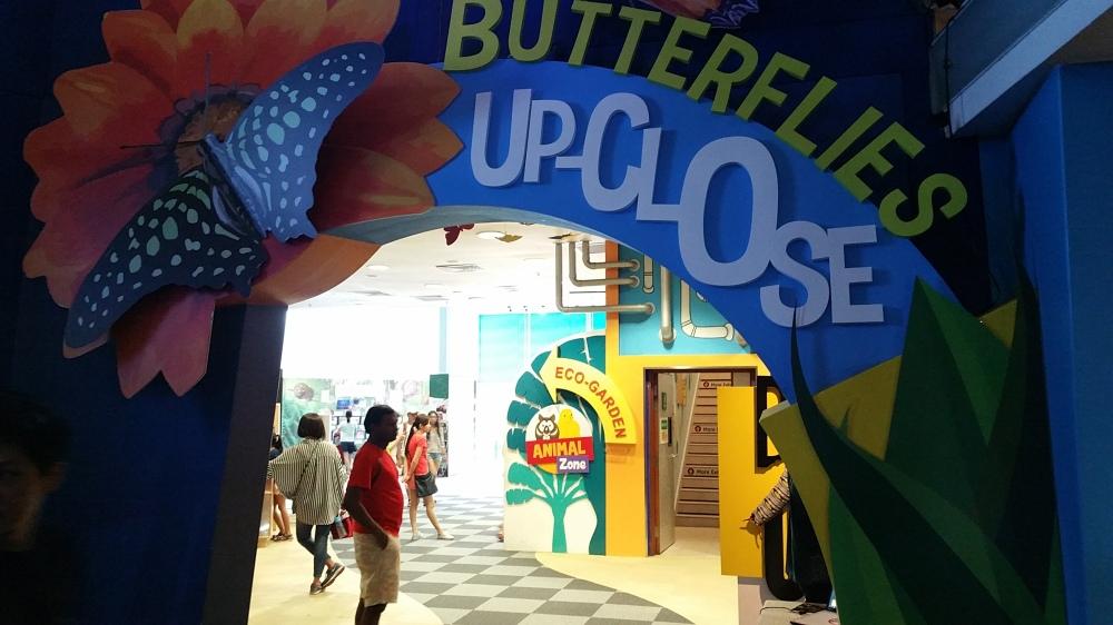 Science Centre Singapore 5