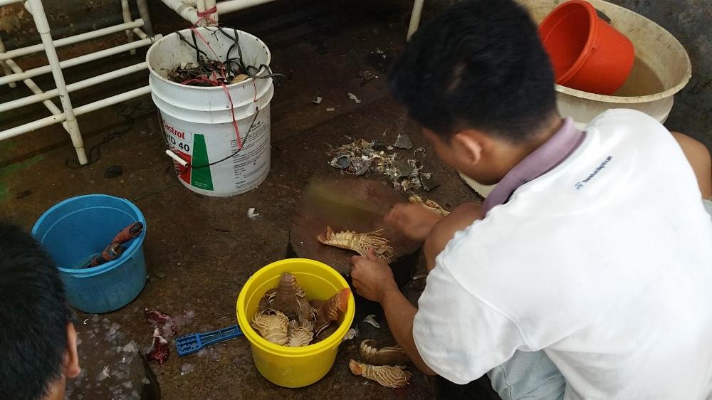 Rezeki Seafood Batam 2