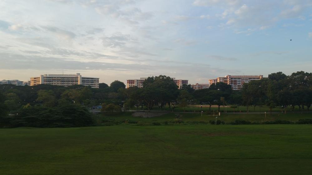 Evening Over Bishan-Ang Mo Kio Park 1