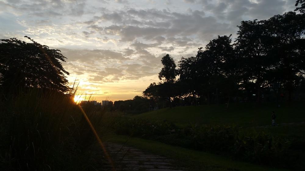 Evening Over Bishan-Ang Mo Kio Park 2