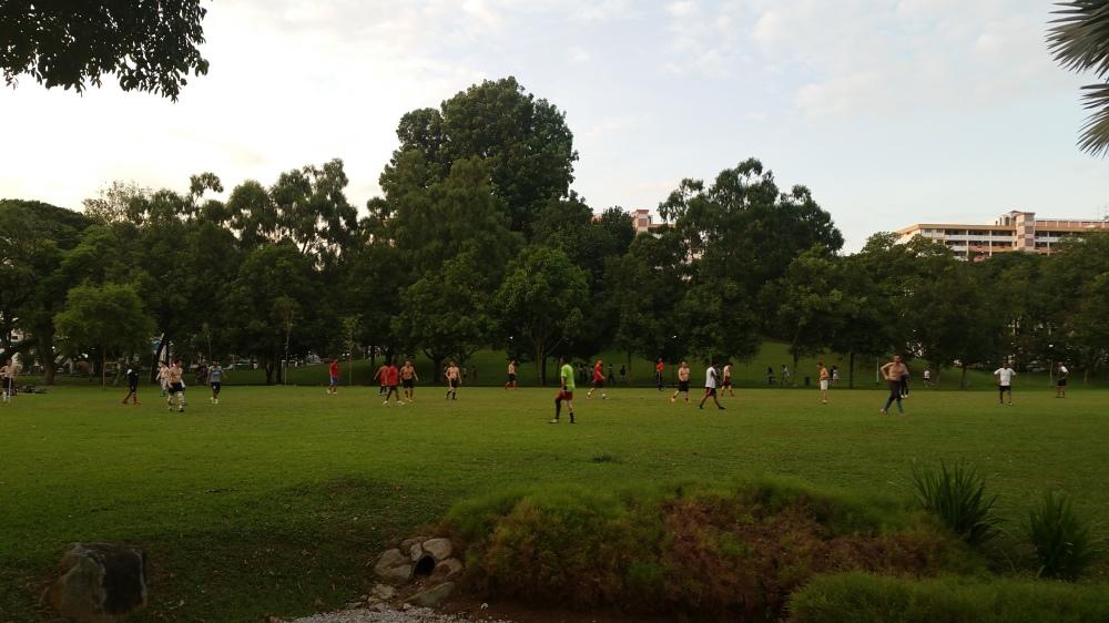 Evening Over Bishan-Ang Mo Kio Park 4