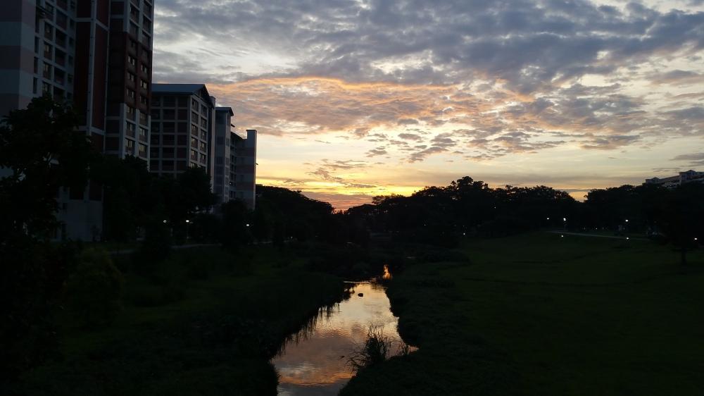Evening Over Bishan-Ang Mo Kio Park 5